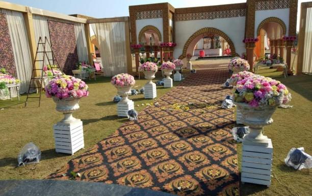 lilly-resort-lawn.jpg